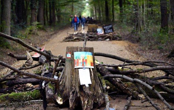 Kletterausrüstung Forst : Sicherheitsgurt klettergurt kletterausrüstung baumpflege ebay